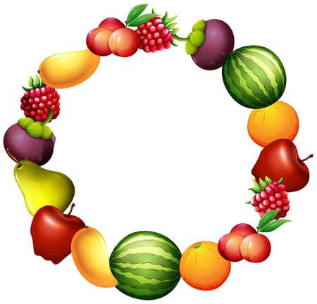rasberry: Frame design with fresh fruits illustration