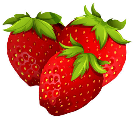 group of objects: Fresh strawberries on white background illustration