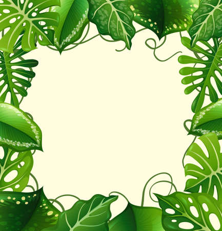 botanical gardens: Frame design with green leaves illustration