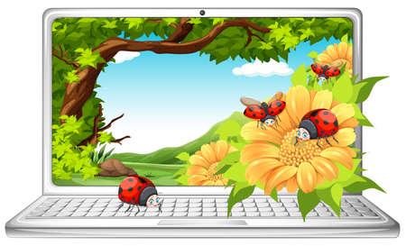 laptop outside: Ladybugs in garden on computer screen illustration Illustration