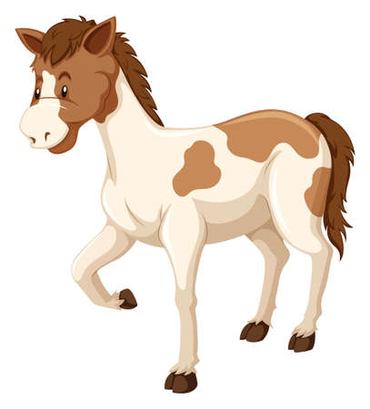 white fur: Horse with brown and white fur illustration