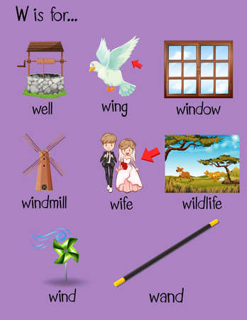 phonetics: Different words begin with letter W illustration Illustration