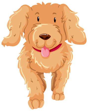 Dog with fluffy brown fur illustration Illustration
