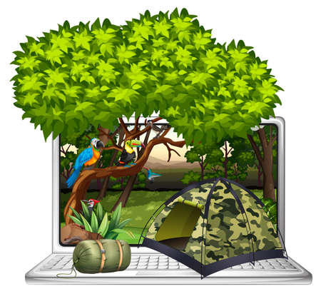 camping site: Wild birds and camping site on computer screen illustration