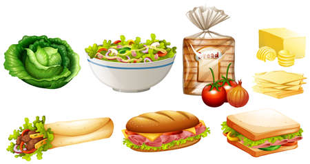 Set of different kinds of food illustration Illustration