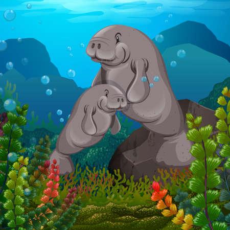 Mantanees swimming under the sea illustration