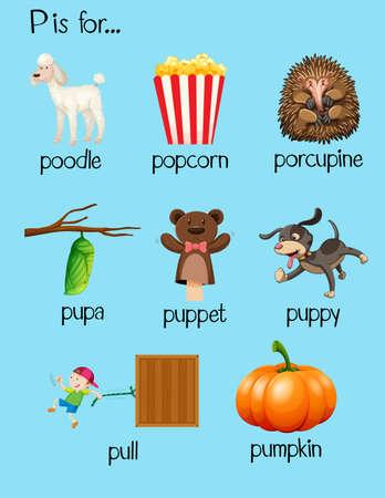 p illustration: Many words begin with letter P illustration