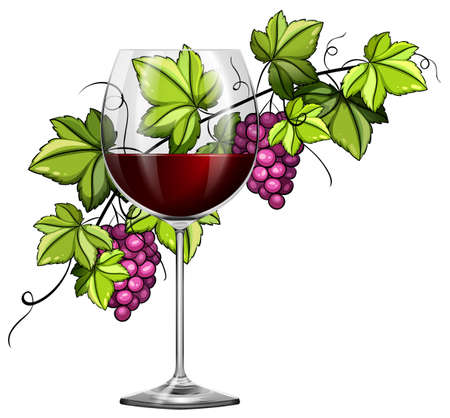 Red wine in glass and grapes in background illustration Illustration