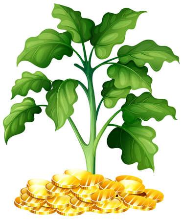 plant growing: Plant growing on money illustration