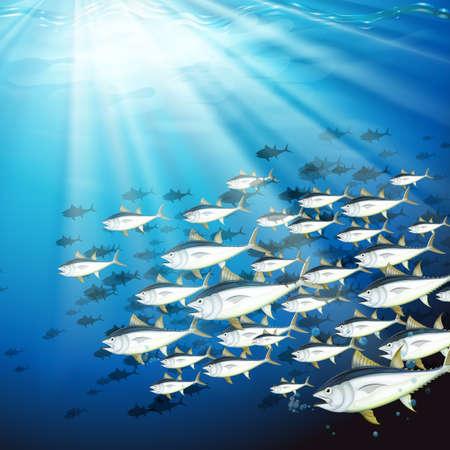 Underwater scene with school of tuna illustration Illustration