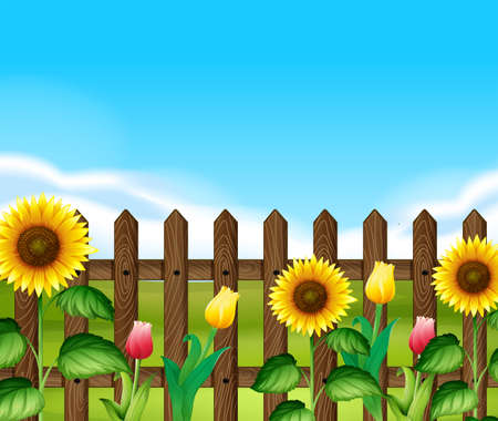 garden flowers: Wooden fence with flowers in the garden illustration Illustration