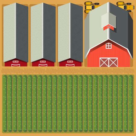 farmyard: Aerial view of farmland and crops illustration