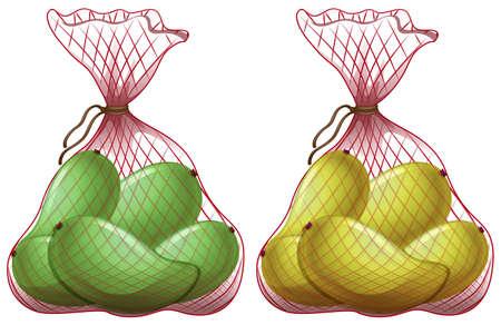 mangoes: Fresh mangoes in net bags illustration