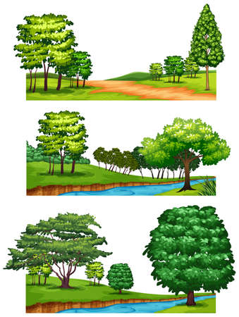 stream: Nature scenes with trees and rivers illustration