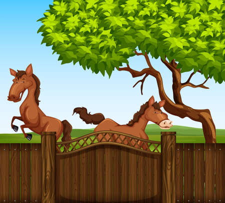 brown horse: Two brown horse in the field illustration Illustration