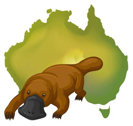 platypus: Platypus and Australia map illustration Illustration