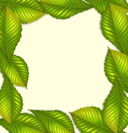 borders plants: Frame design with green leaves illustration