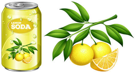 tin packaging: Fresh lemon and lemon soda in can illustration Illustration
