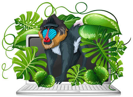 Baboon on computer screen illustration