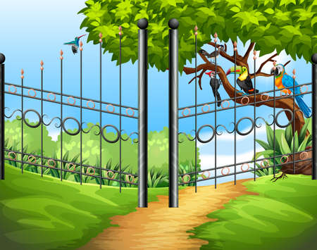 woodpecker: Scene with metal fence and birds on tree illustration