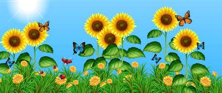 Vlinders vliegen in de zonnebloem veld illustratie