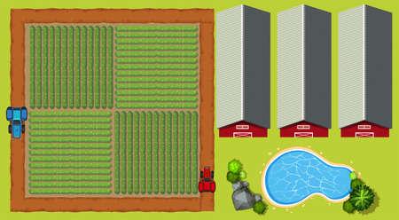barns: Aerial scene with farmland and barns illustration Illustration