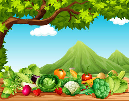 green pepper: Fruits and vegetables on the table illustration
