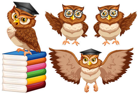 Owls wearing glasses and cap illustration Illustration