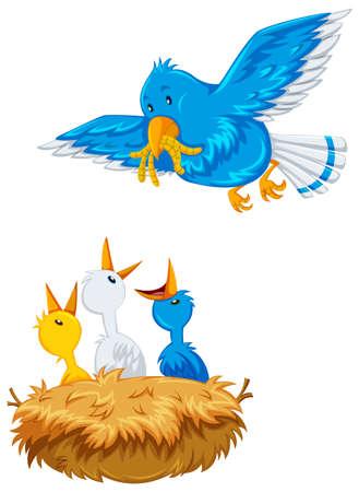 Mother bird feeding the offsprings illustration