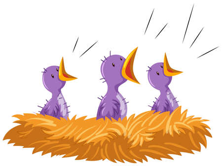 oiseau dessin: Trois bébés oiseaux dans le nid illustration Illustration
