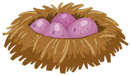offsprings: Four purple eggs in the nest illustration Illustration