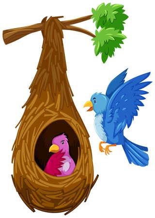 Bird hatching in nest and bird flying outside illustration Illustration