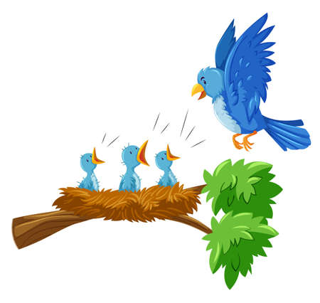 Mother and babies bird on the branch illustration