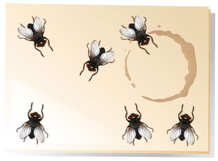 living things: Many flies on the water stain illustration