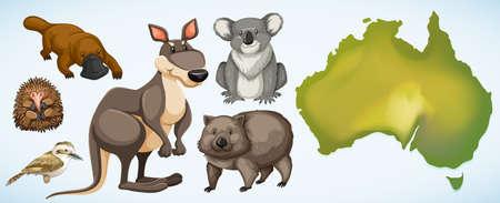 Different wild animals in Australia illustration