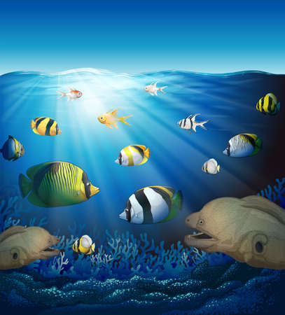 Underwater scene with fish and seaweeds illustration
