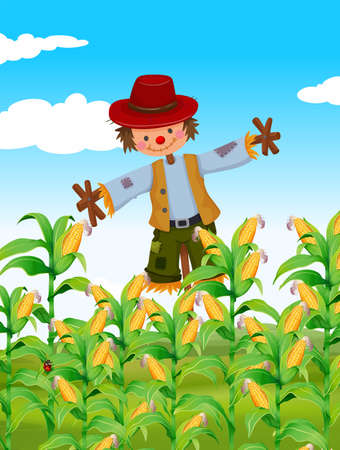 corn field: Scarecrow standing in corn field illustration