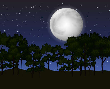 forest landscape: Scene with fullmoon at night illustration