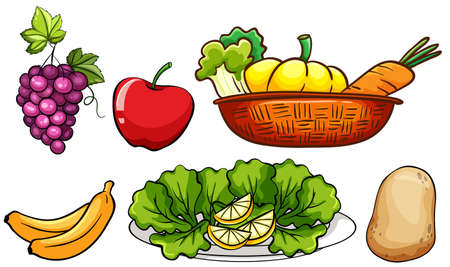 canasta de frutas: Set of vegetables and fruits illustration