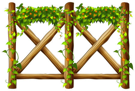 Fence design with wooden fence and vine illustration