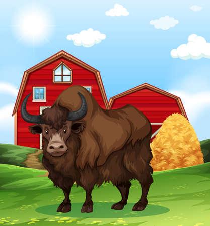 Buffalo standing in farmyard illustration