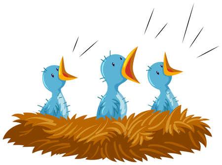 Three baby birds in nest illustration