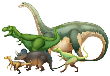 Many dinosaurs on white background illustration