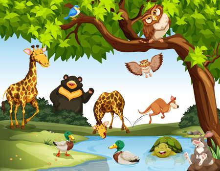 Muchos animales salvajes en la ilustración del parque