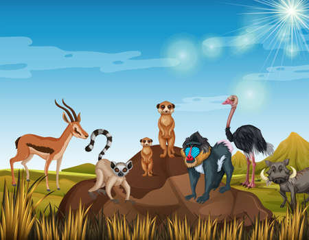 Many animals standing in the field illustration