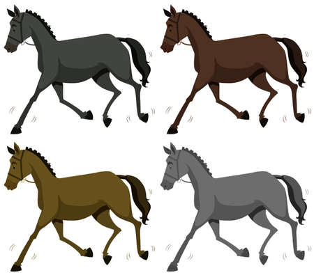 multiple objects: Horse in four colors illustration