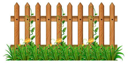 wooden fence: Wooden fence with vine illustration Illustration