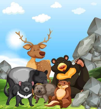 animales salvajes en el parque de la ilustración Vectores