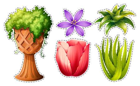 aloe vera plant: Sticker set with flowers and leaves illustration Illustration