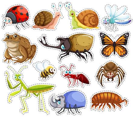 insecto: Conjunto de etiqueta de muchos insectos ilustración Vectores